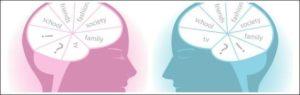cervello-uomo-donna_interna-nuova