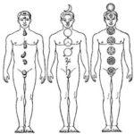Ghiandole Endocrine – CORRISPONDENZE SPIRITUALI