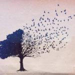 I pensieri e le azioni