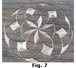 crop-cerchi-F7