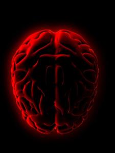 il-potente-cervello-del-cuore-la-scienza-ci-s-L-4-O8Xx