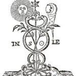 ALCHIMIA E SALUTE (1 di 4)