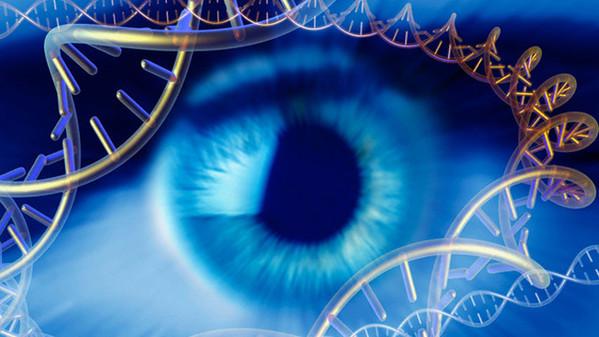 Genetics research, conceptual image