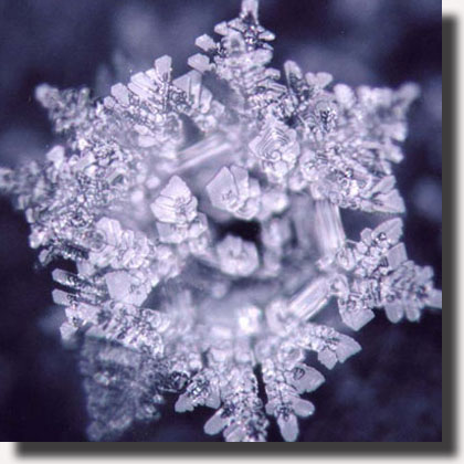 03art_acqua_emoto