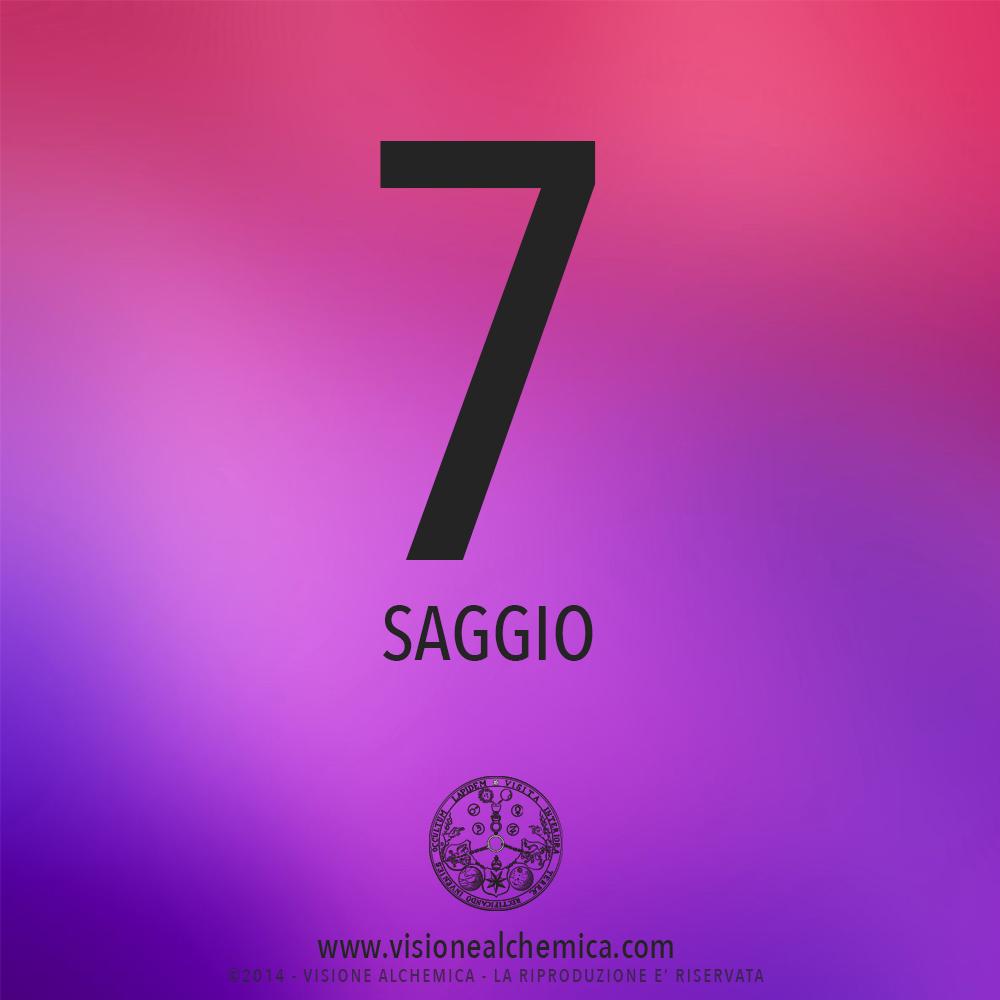 7SAGGIO