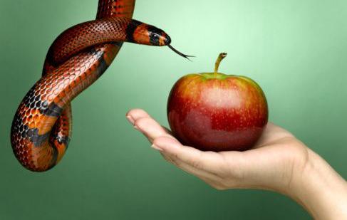 Risultati immagini per eva e la mela