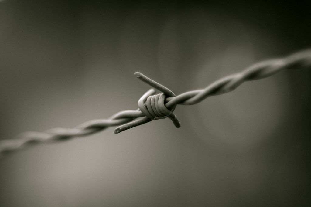Barbed_wire_B&W
