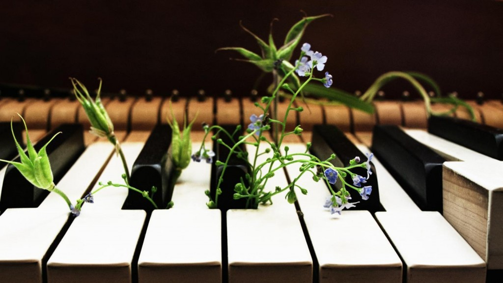 does-music-help-plants-grow_ef7bf502-a831-447e-ab34-caefd32765ff