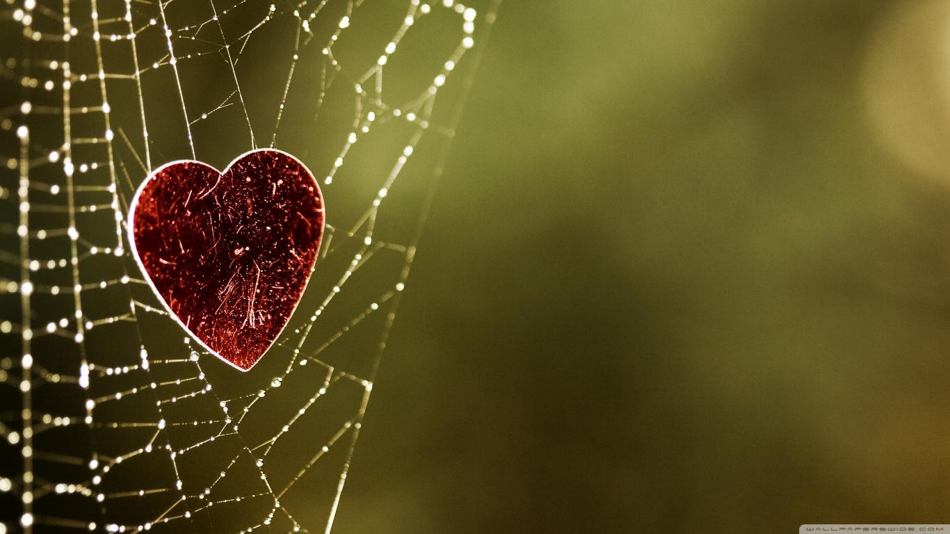 Frasi-damore-amare-significa-frasi-sul-cuore-e-sui-veri-amori