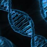 SCIENZIATI SCOPRONO PARTI DEL DNA UMANO CHE NON PROVIENE DAI NOSTRI ANTENATI. SI STRATTA DI GENOMA ALIENO