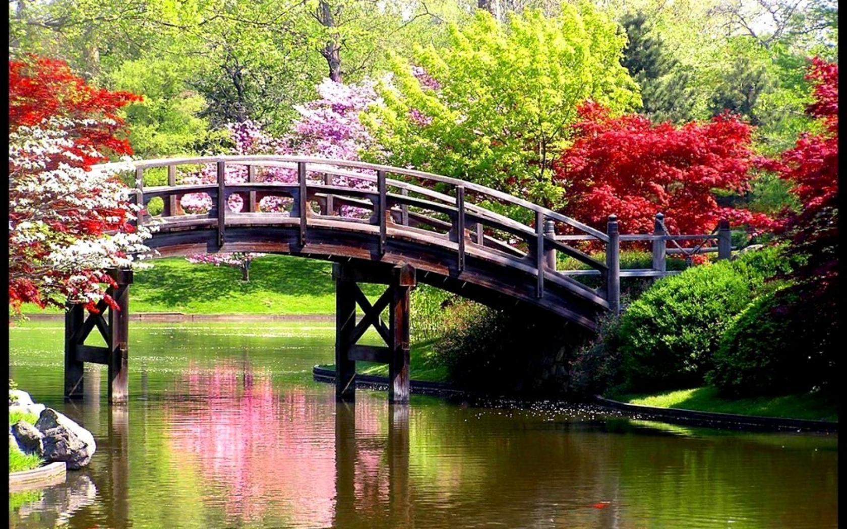 ponte-natura-