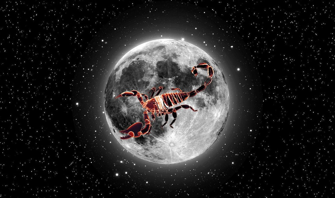 scorpion_on_moon_by_saltso-d4yijv7