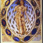 I SEGNI ZODIACALI E GLI ORGANI BERSAGLIO – ASTROLOGIA PSICOSOMATICA