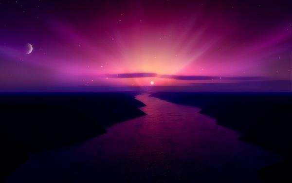 notte viola