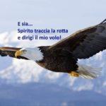 PORTALE 8.8 NEL NUOVO INIZIO DELL'UNO